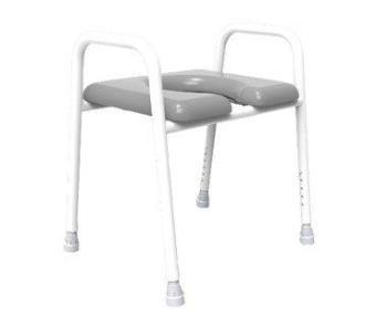 Awe Inspiring Eastin Rr Premium Over Toilet Frame With Commode Seat Spiritservingveterans Wood Chair Design Ideas Spiritservingveteransorg