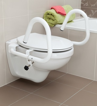 Throne Accessories Toilet Grab Rails And Step