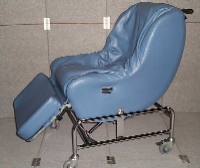 Tub Water Chair : water chair aged care - Cheerinfomania.Com