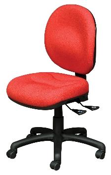 Anatome Comfort Task Chair