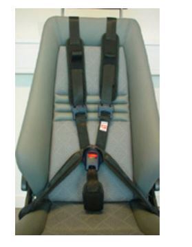 Carfix 5 Point Harness