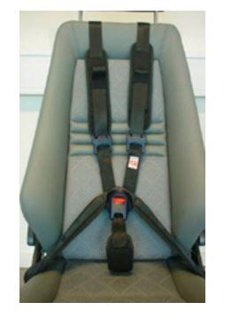 Carfix 5 Point Harness | istive Technology Australia | ILC NSW