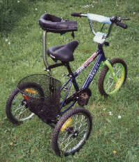 Trikes For Children and Adults
